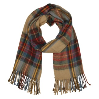 Currently Coveting: Aldo Scarf