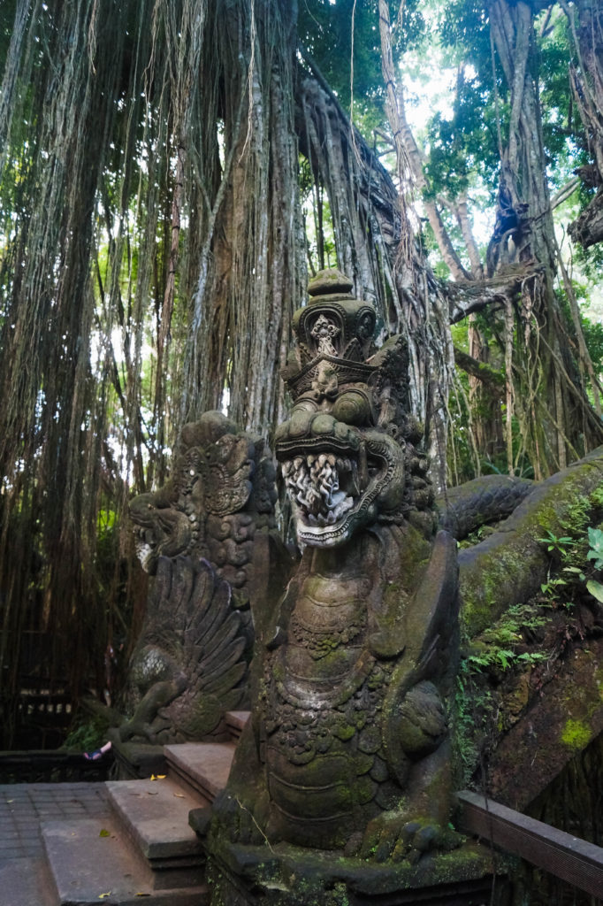 Sacred Monkey Forest in Ubud